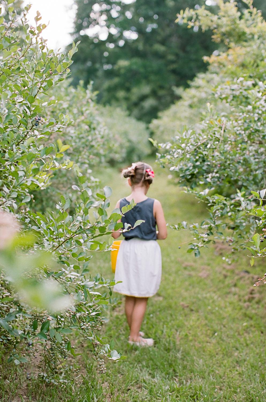 Summer Blueberry Picking Kids on Film Mississippi-8.jpg