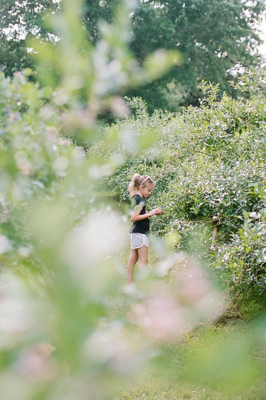 Summer Blueberry Picking Kids on Film Mississippi-10.jpg