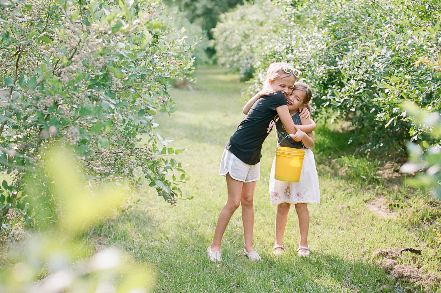Summer Blueberry Picking Kids on Film Mississippi-9.jpg