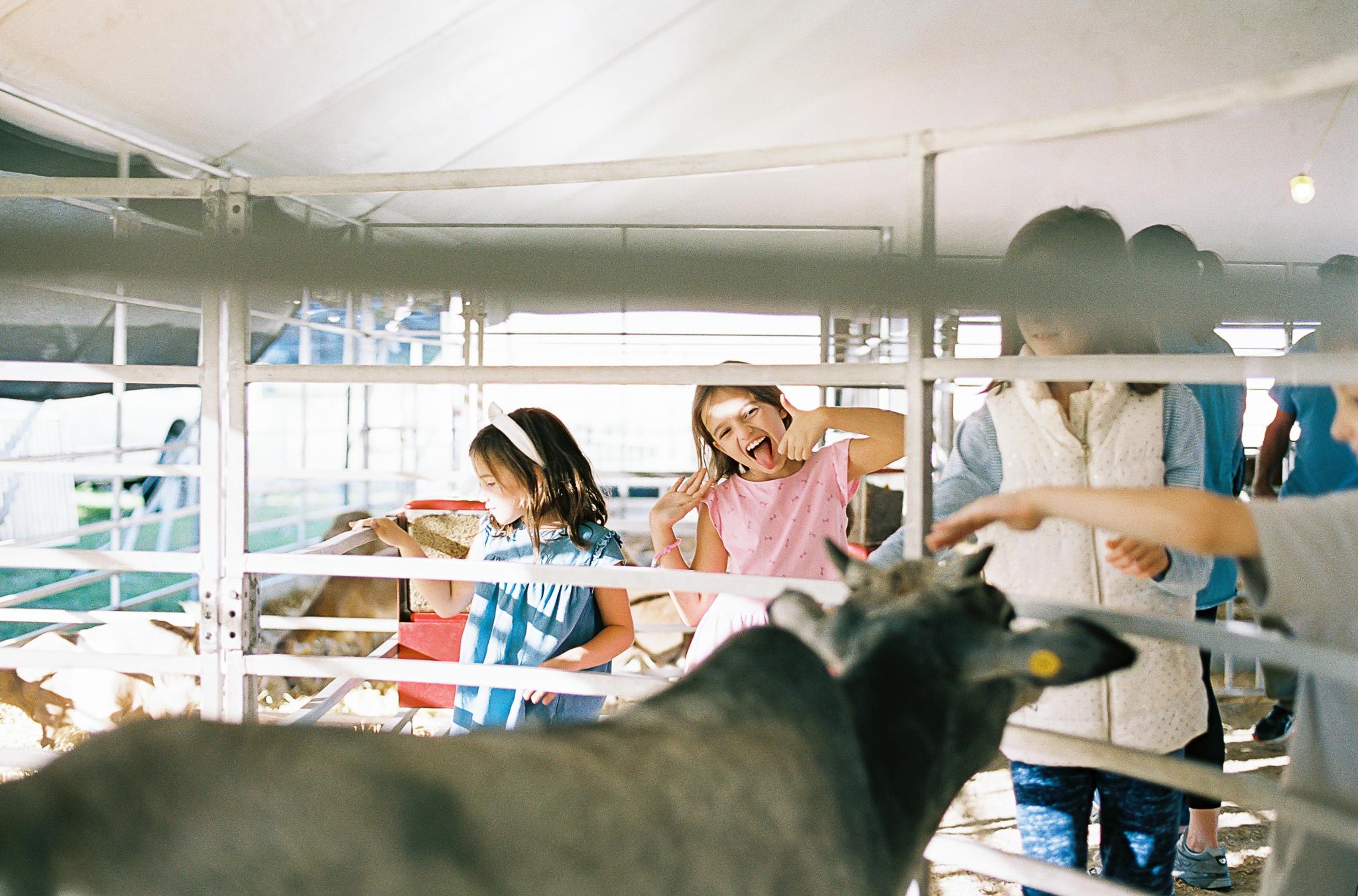 Mississippi Family Child Photographer State Fair-18.jpg