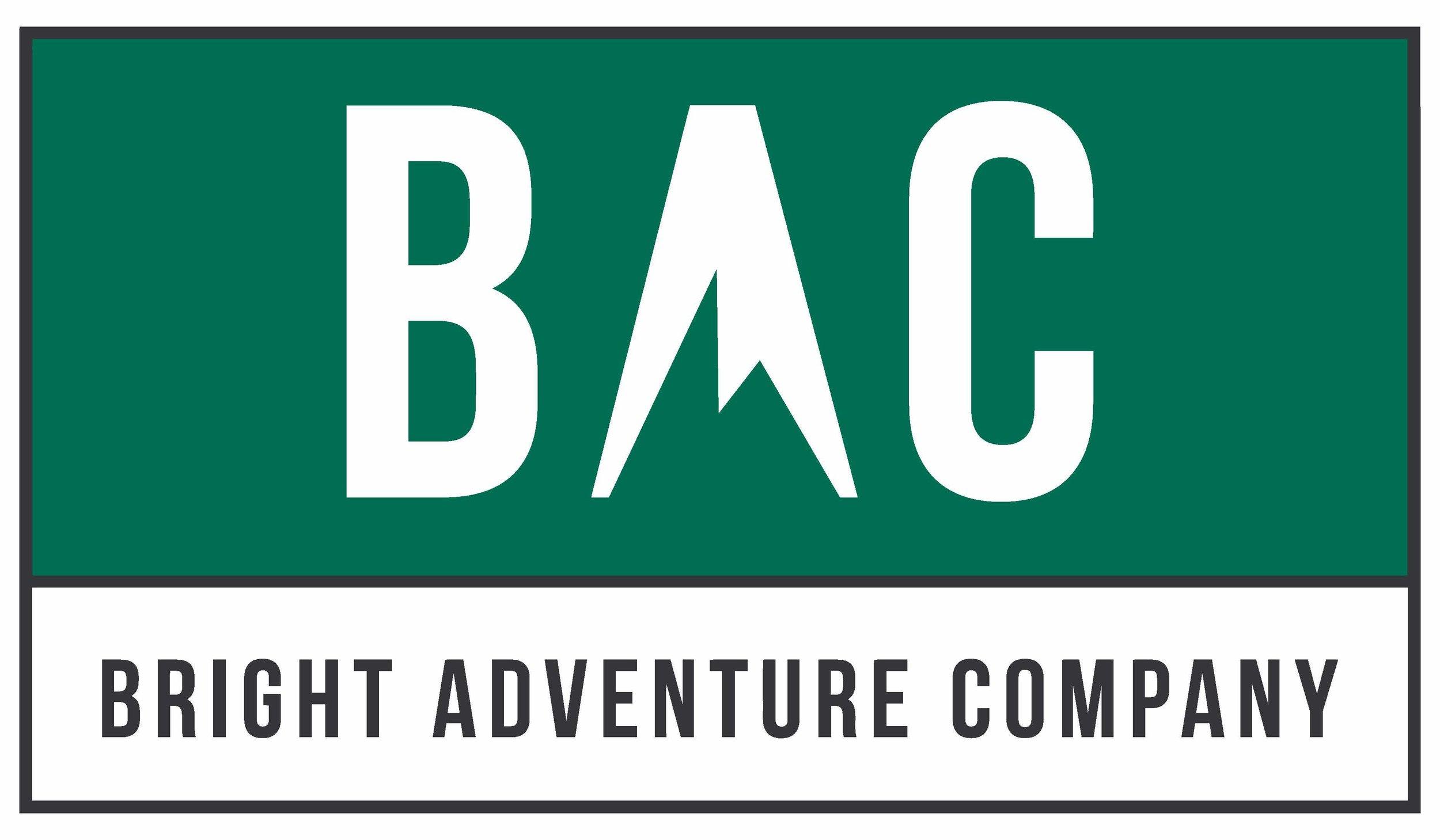BrightAdvCo Logo stroke-and-fill.jpg