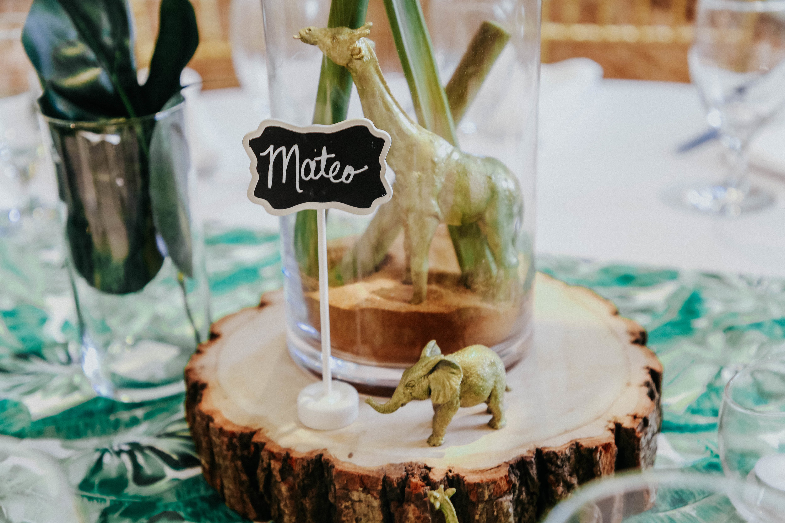 JUNGLE AND GREEN BABY SHOWER  (25).jpg