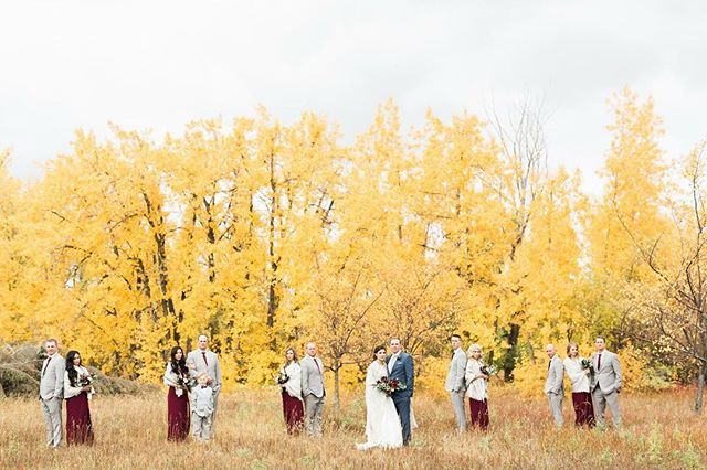 I am so in love with the dense yellow and the red.  Perfect colouring for a winter wedding.  @santhrsa Make Up & Hair : @somethingborrowedbeauty  Dress : @rimearodaky Florals : @wildmagnoliafloral  Video : @emurzello