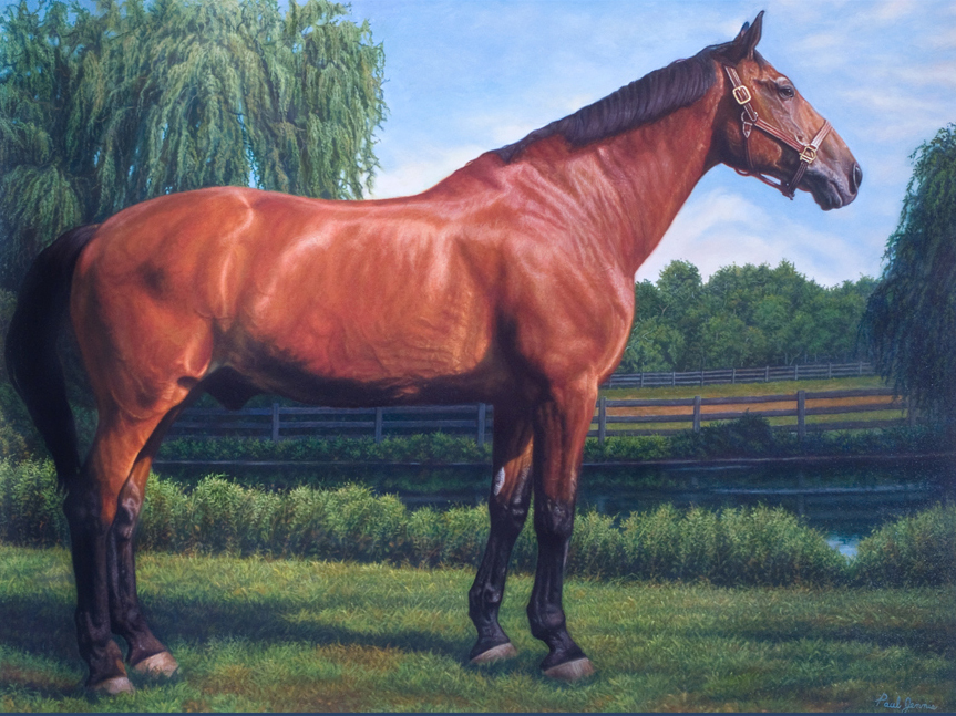 Dressage Championship Horse
