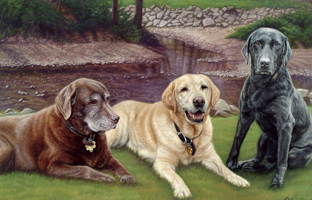 Three Color Labs
