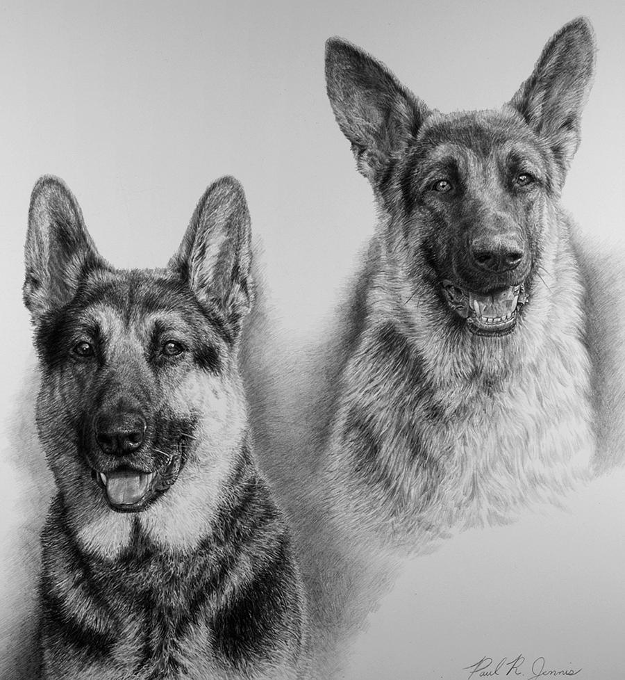 Tucker & Brady
