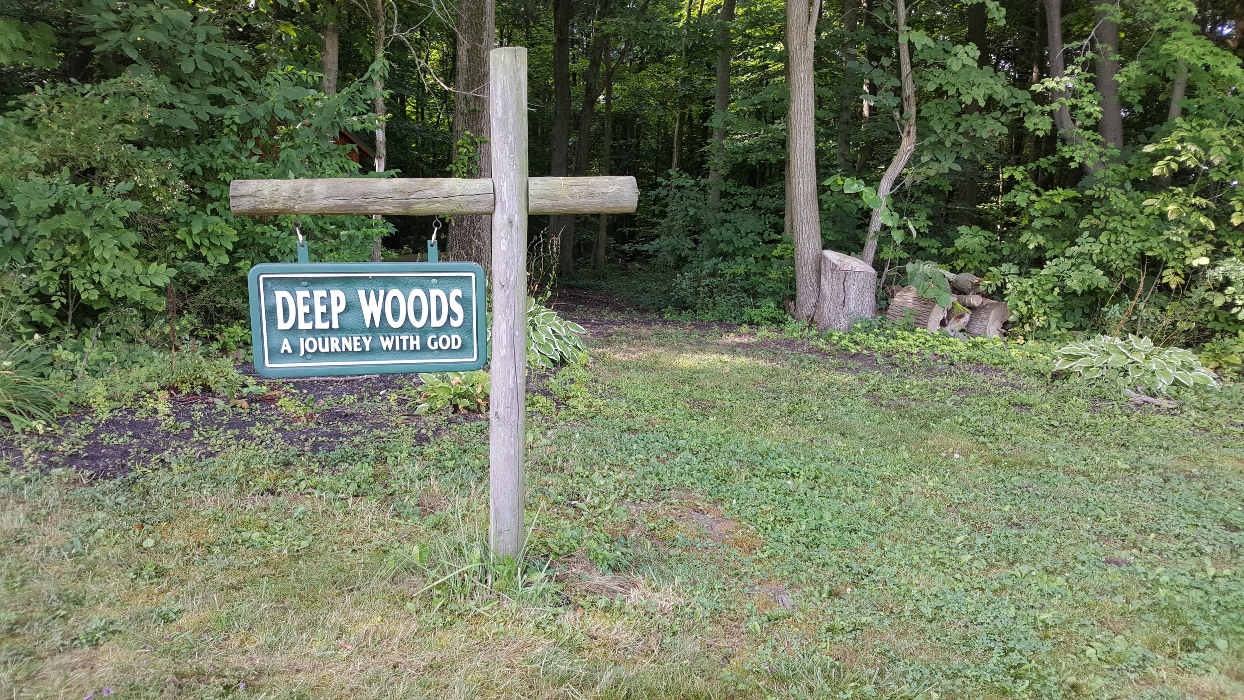 Entrance to the DEEP WOODS
