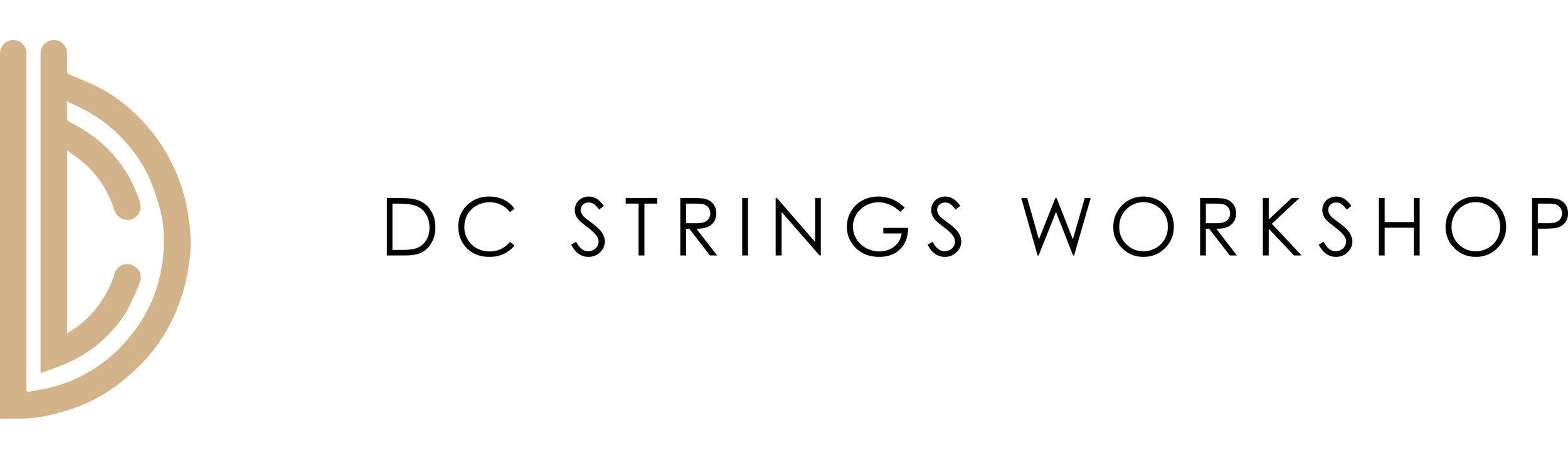 DC-StringsWorkshop (1).jpg