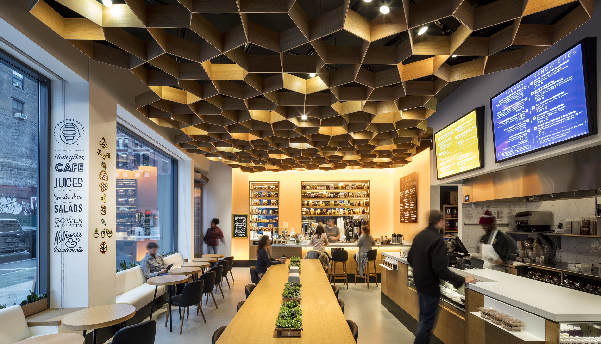 Honeybrains, New York, NY   Vamos Architects