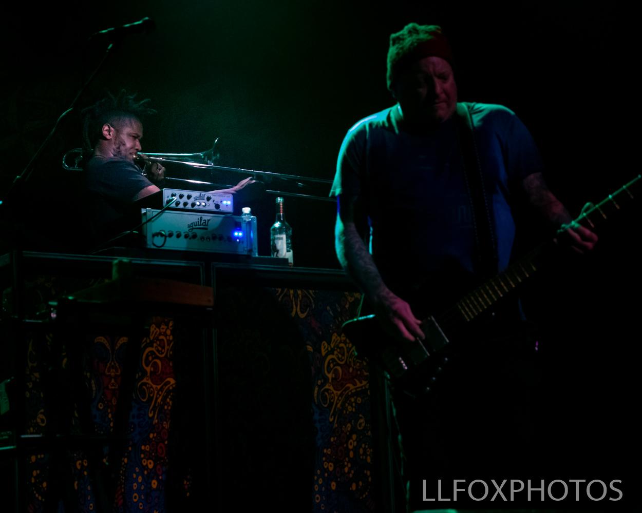 LLFOXPHOTOS-0399.jpg