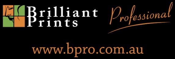 BP_logo_website.jpg