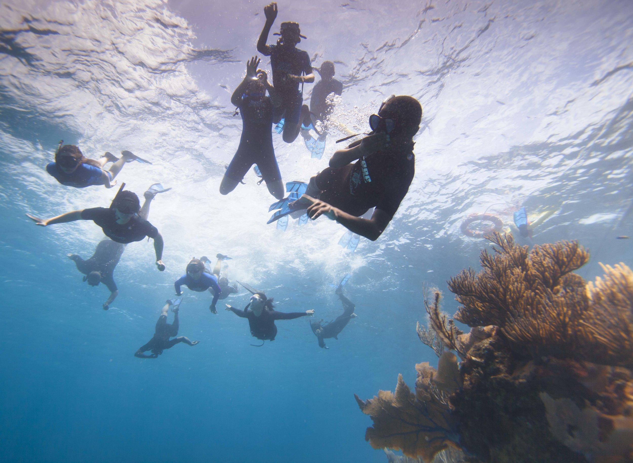 kids on the reef - Bermuda
