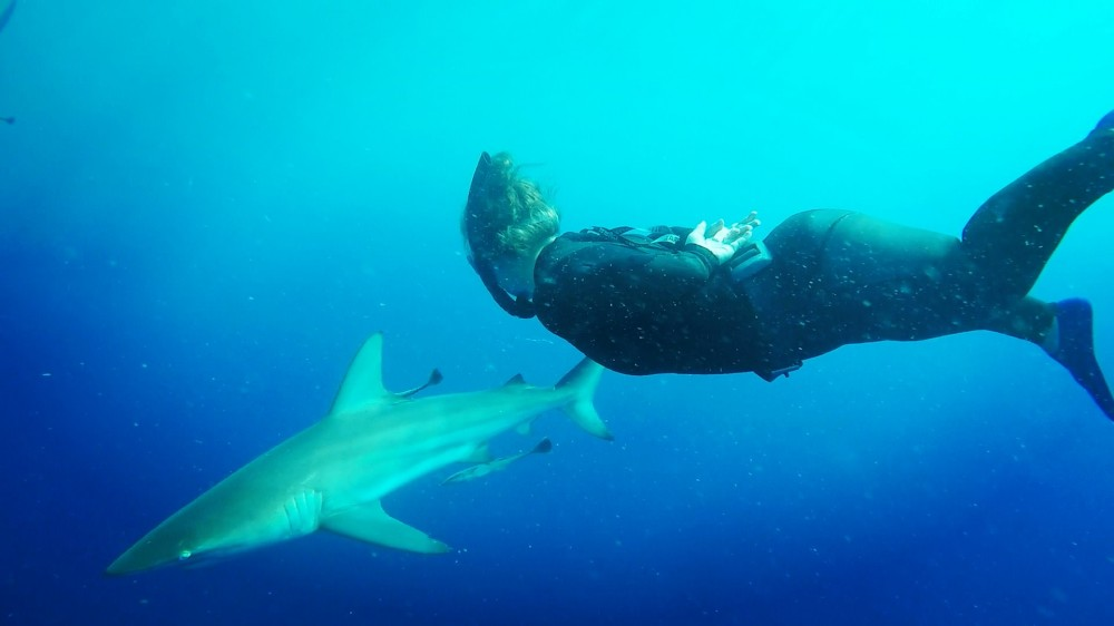 elle_simmonds_freediving_shark.jpg