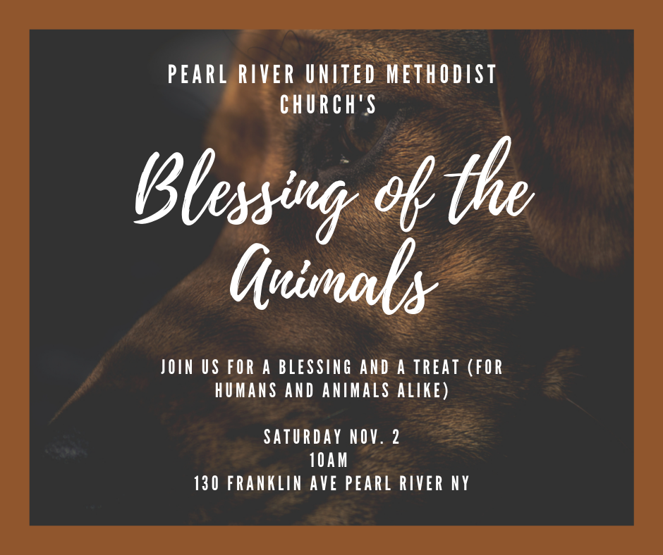 Blessing of the Animals 2019 Pearl River United Methodist Church NY.png
