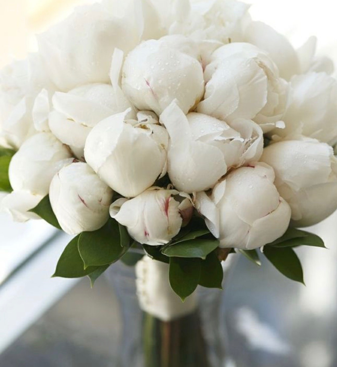 one of my 4 favorites, Peonies, any color...