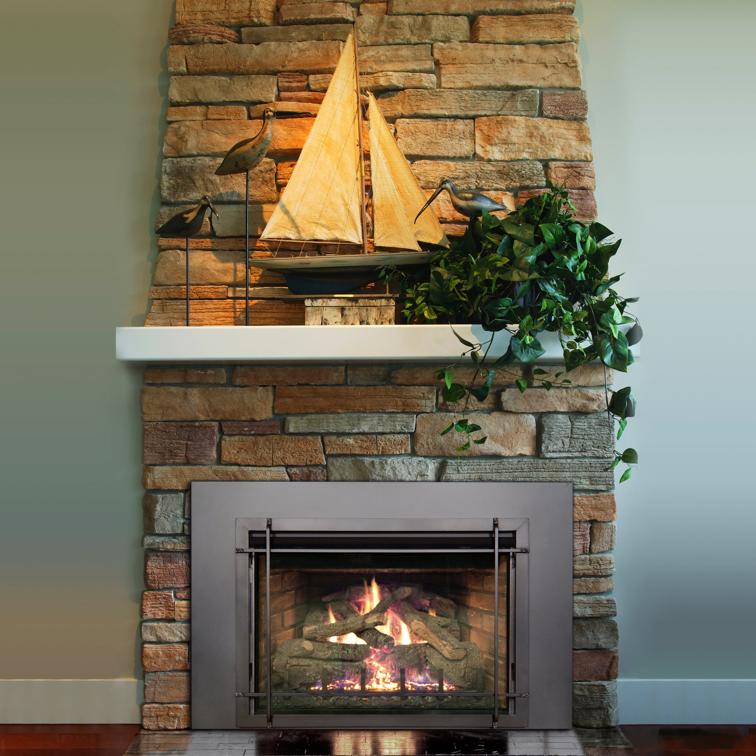 Gas and Wood Fireplace Insert.