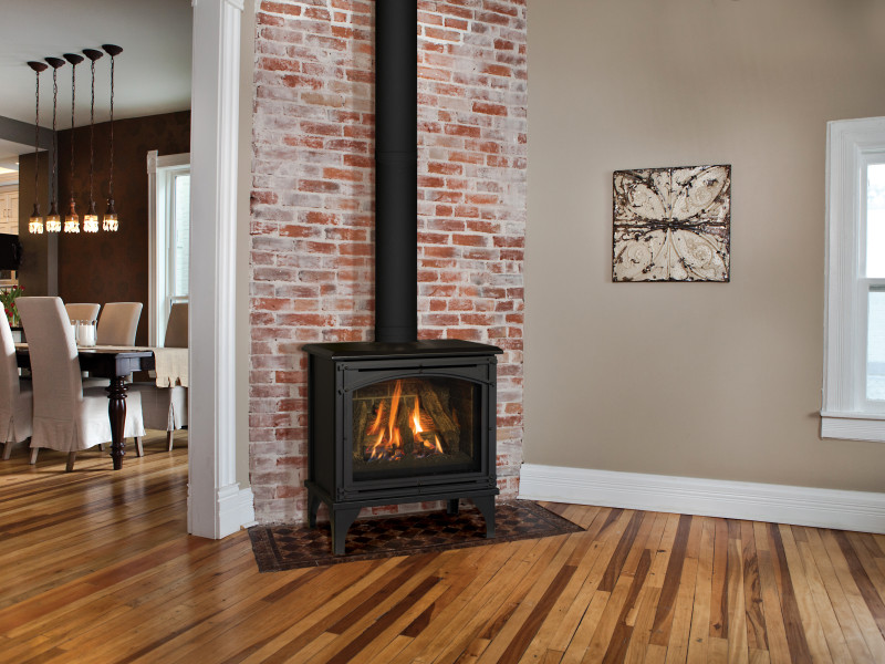 Napoleon-Fireplaces-Seattle-stove.jpg