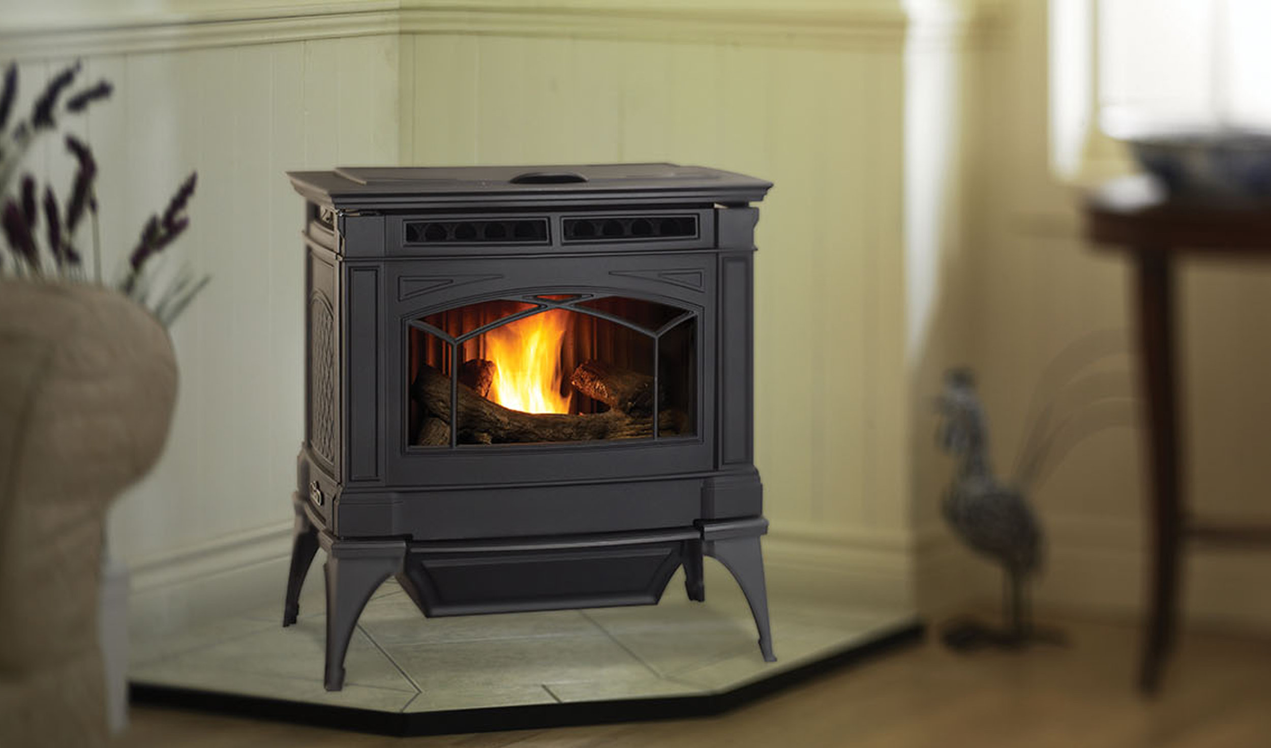 Napoleon-Fireplaces-Seattle-stove3.jpg