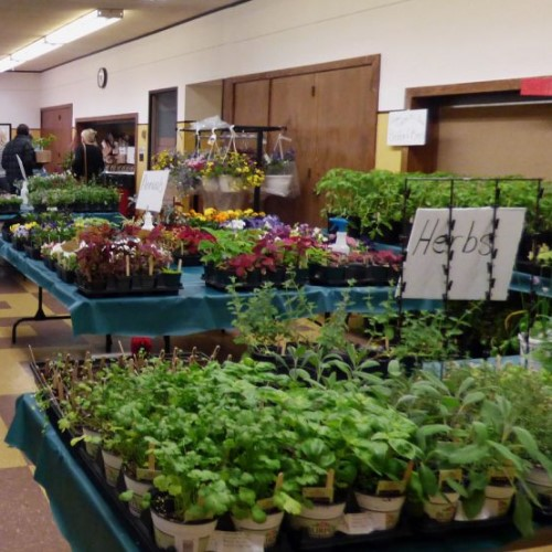Bedford Garden Club Annual Plant Sale - May 10-11, 2019 - Bedford, OH
