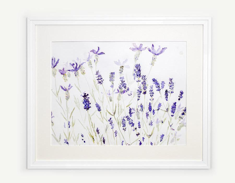 Framed lavender watercolour painting by Jennifer Glover