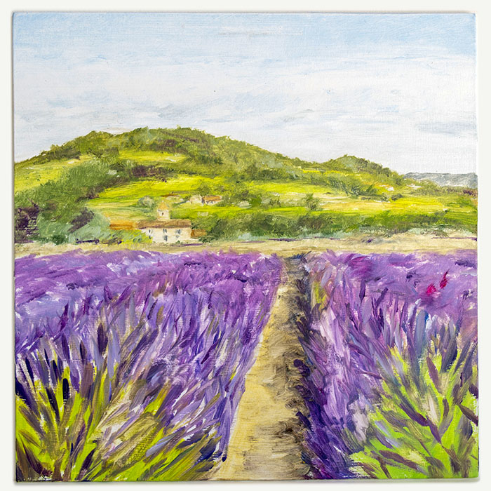 The lavender fields outside Bonnieux in Provence.