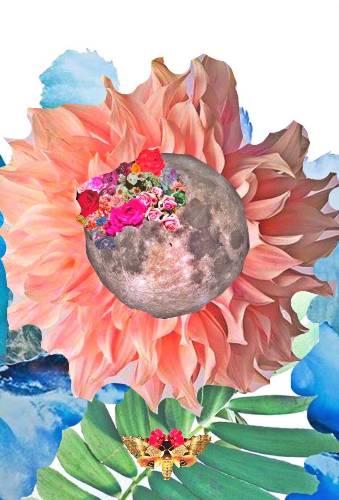 Art Print-Lunar Gaze- Mel Bikowski