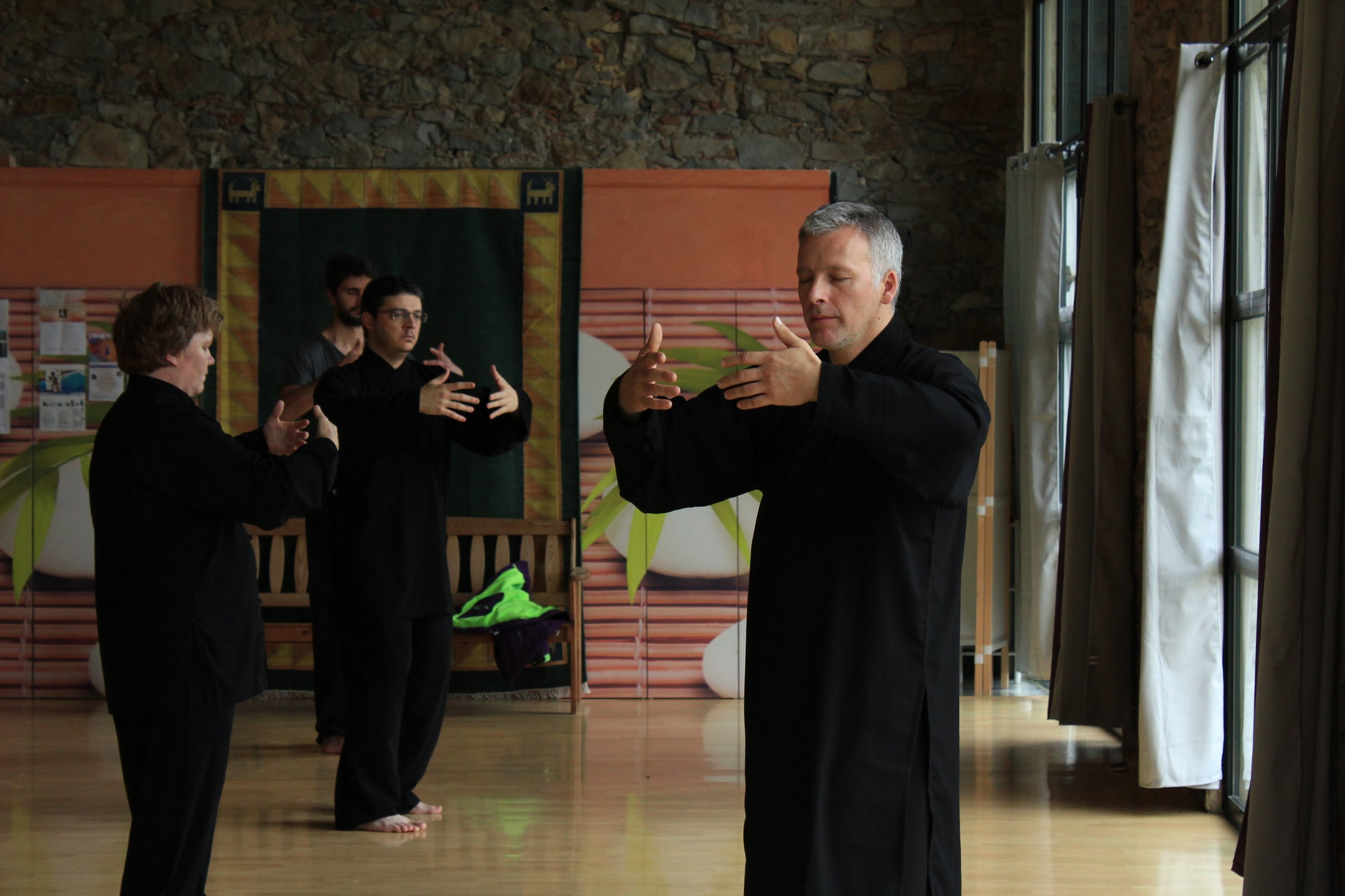 Stage Wudang - Qi Gong du Serpent - Sam.29 et Dim.30 juin 2019 à Blagnac
