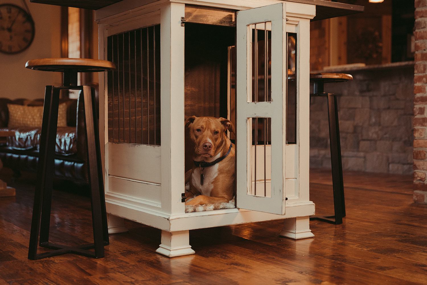 Luxury Dog Kennels.jpg