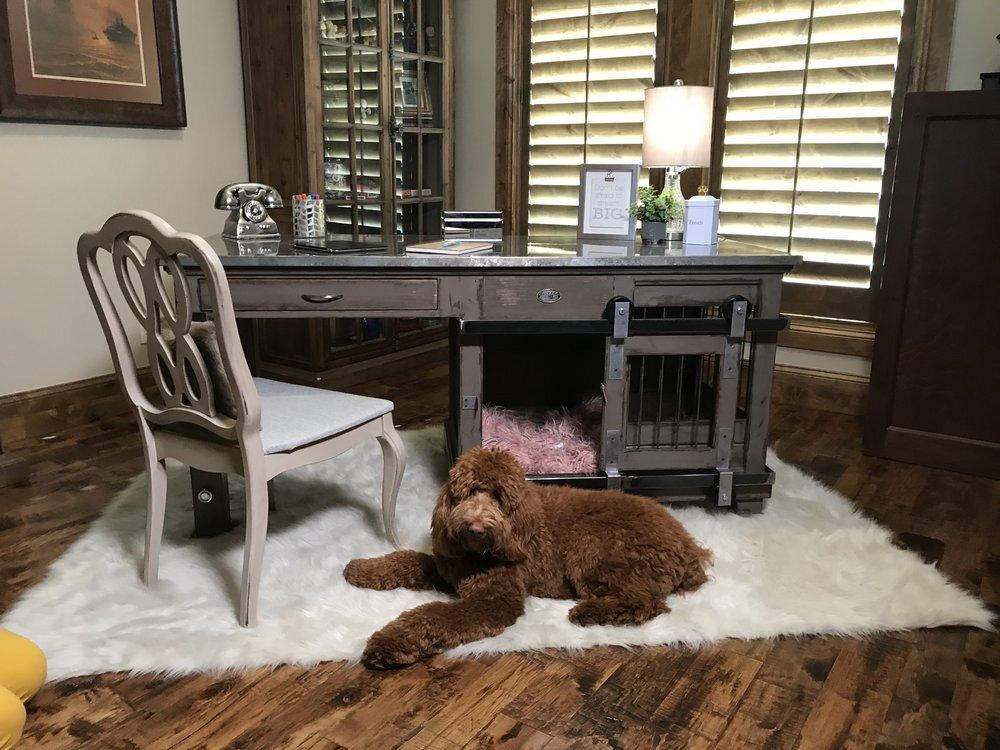 Designer Dog Kennels.jpg