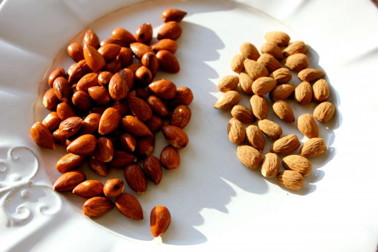 soaked vs unsoaked almonds.jpeg