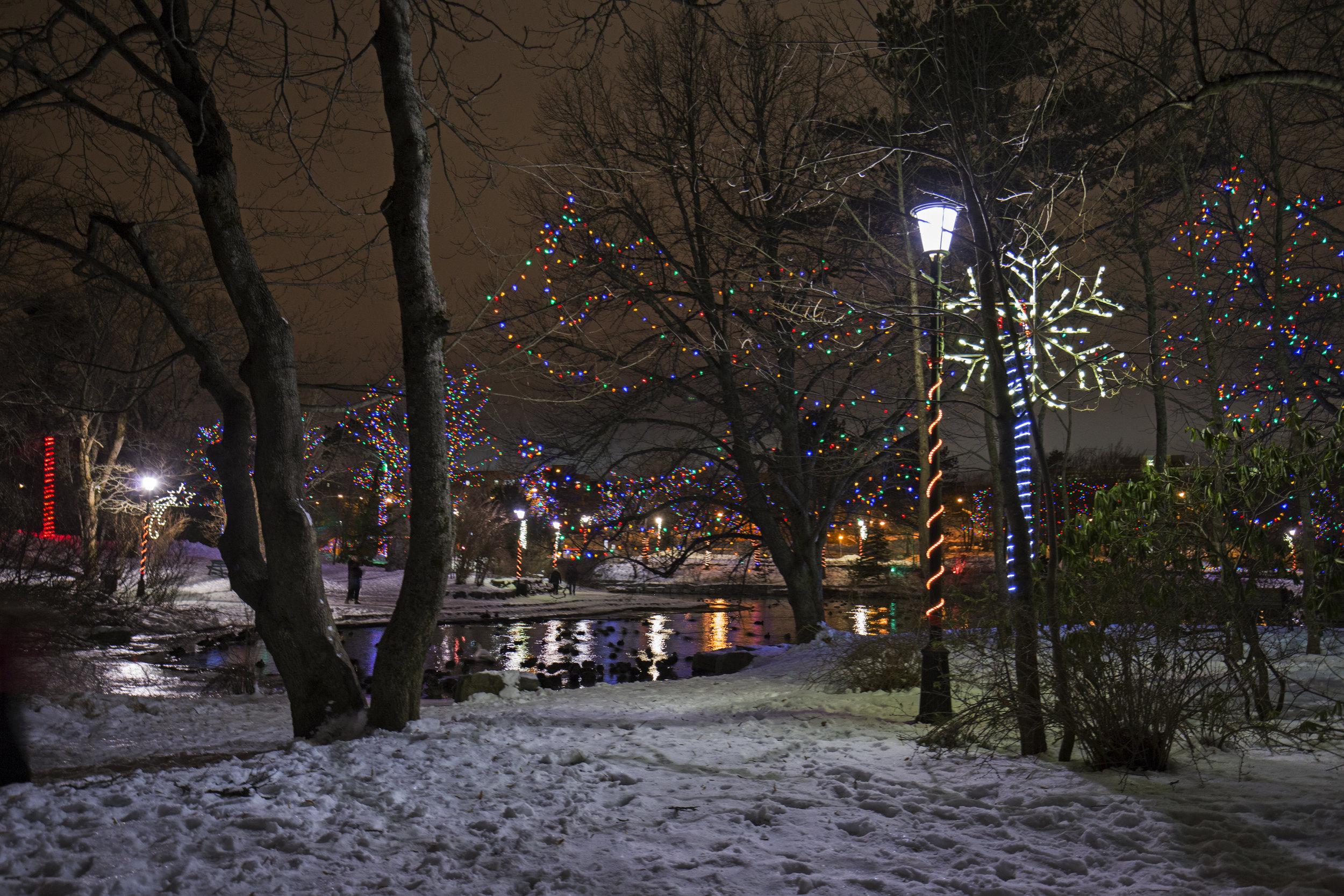Xmas Bowring Park (8).jpg