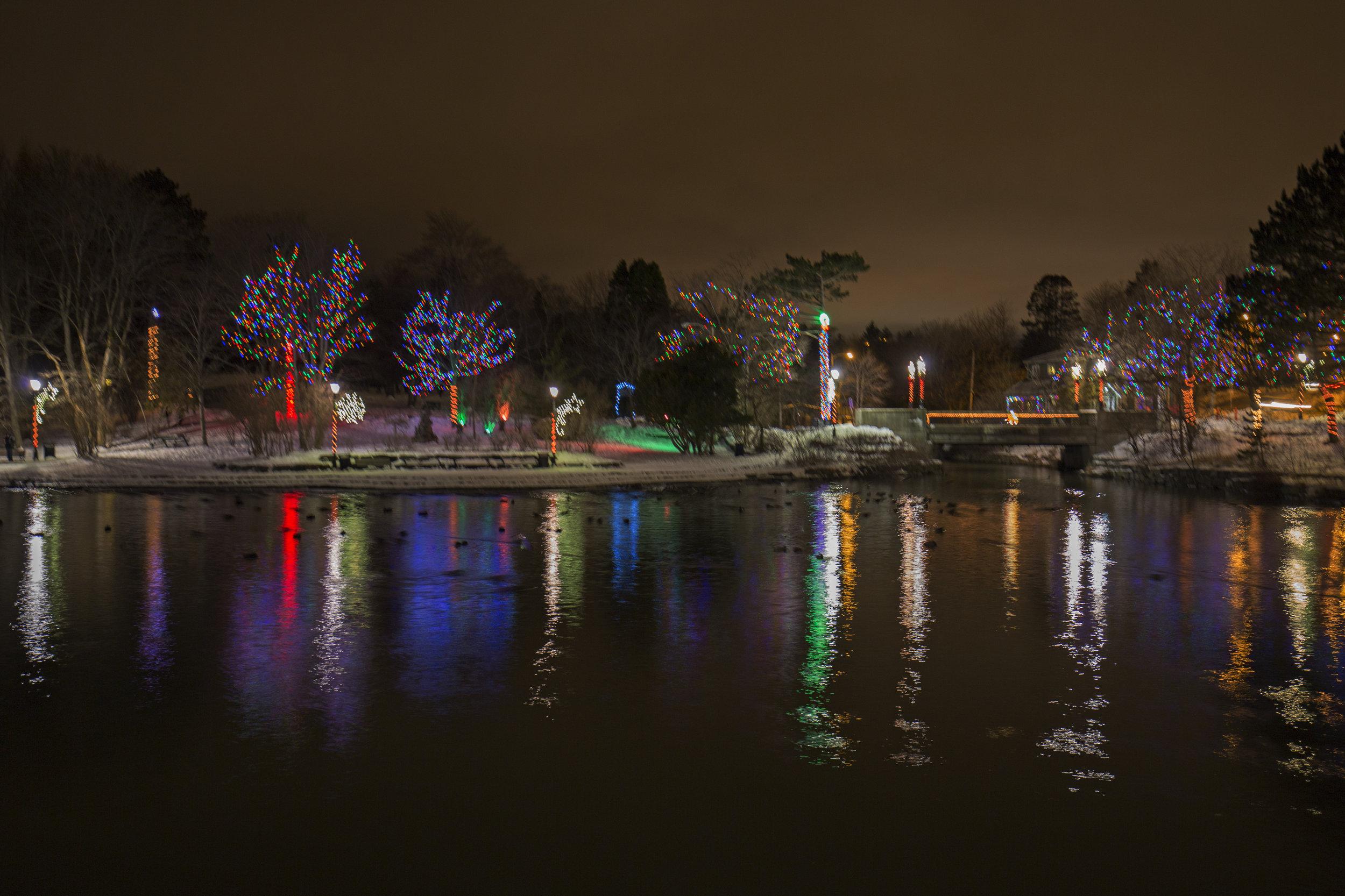 Xmas Bowring Park (9).jpg