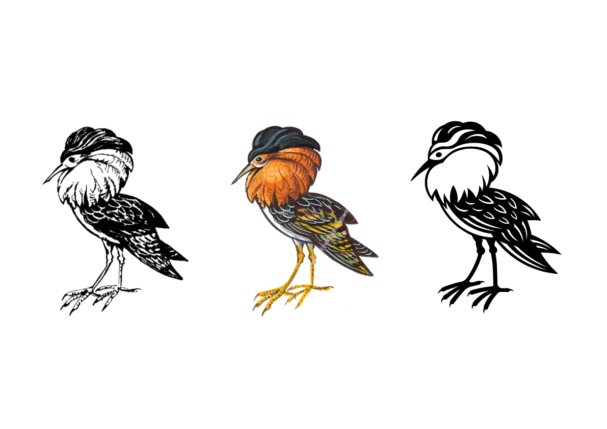Before and after. From original sketches to the graphic Ruff bird