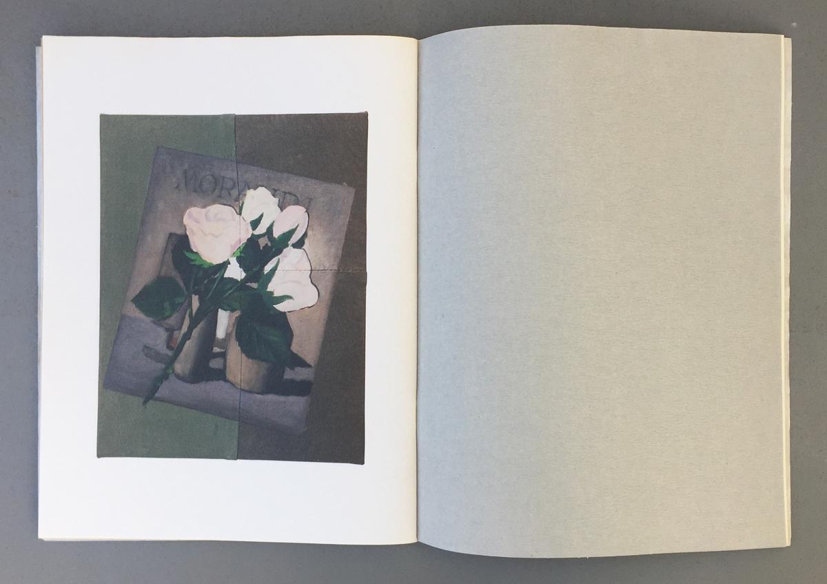 roses_book07.jpg