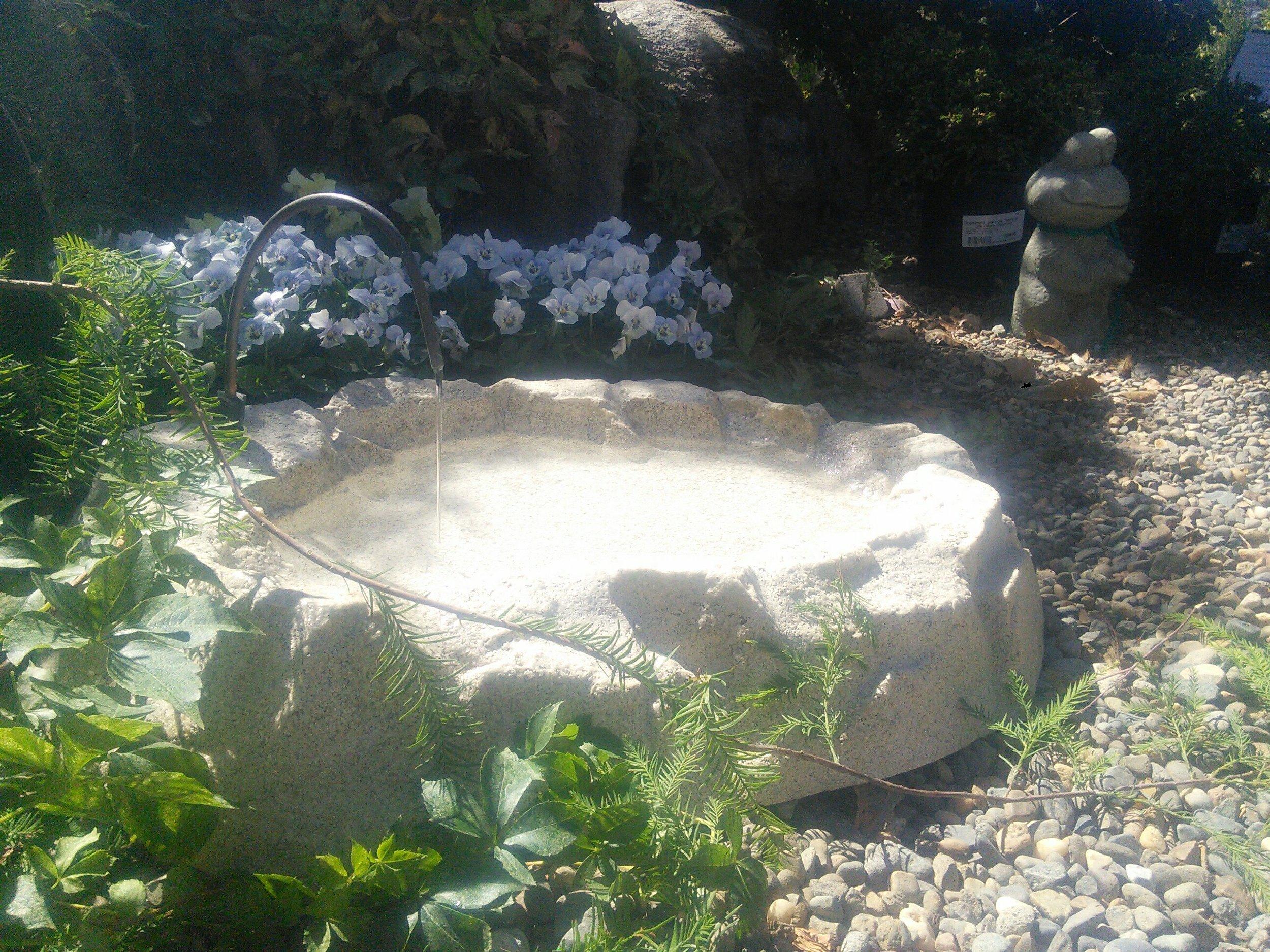 Rocky Mountain Bird Bath.jpg