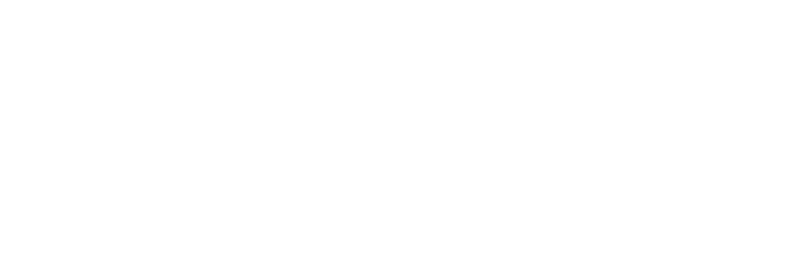 REACH PHYSICAL THERAPY (LOGO) WHITE NO BG.png