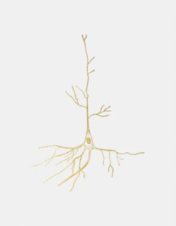 Gold Leaf Neuron Art . Uyeno Miyoshi