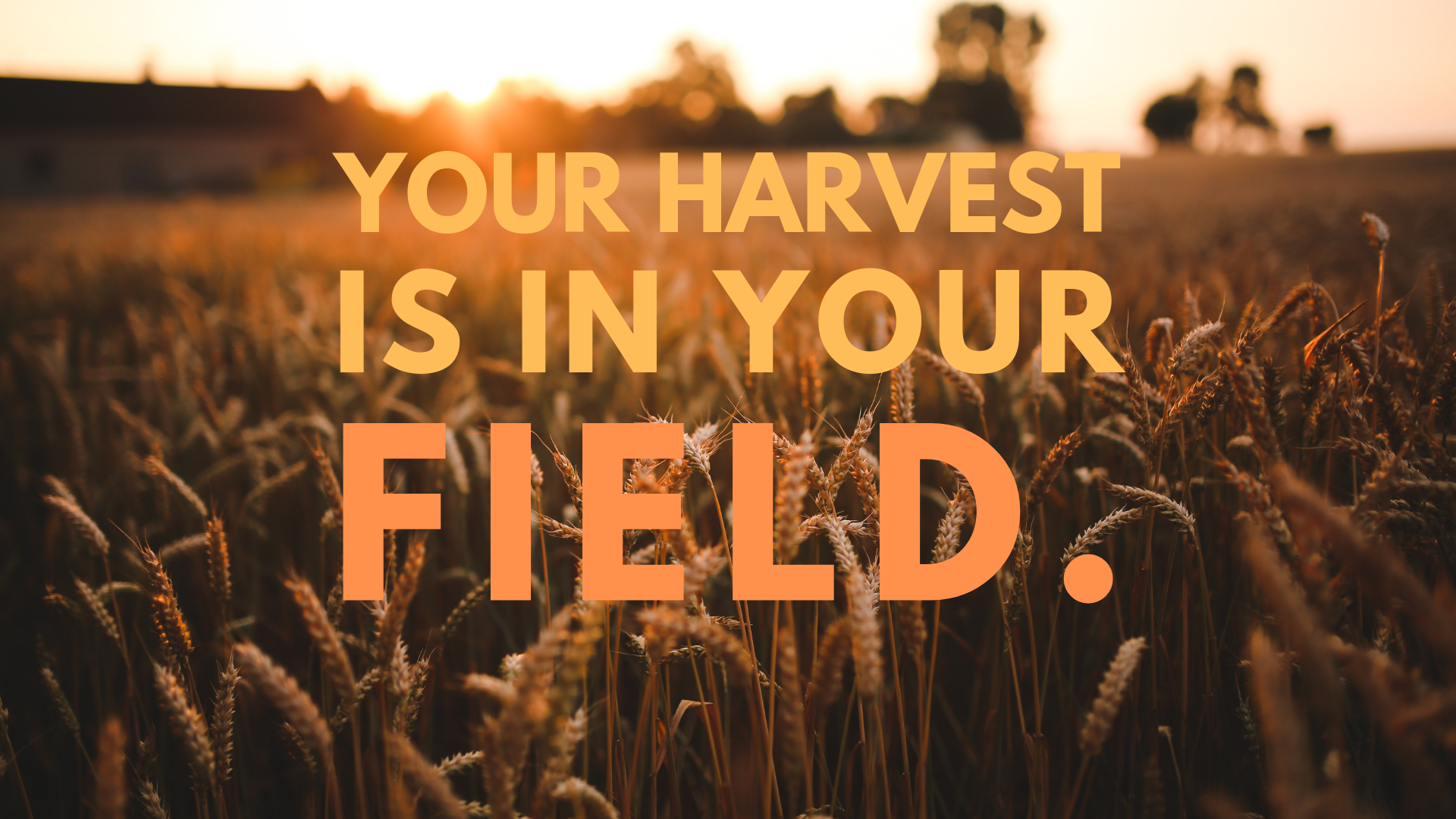 Harvest message slide.PNG