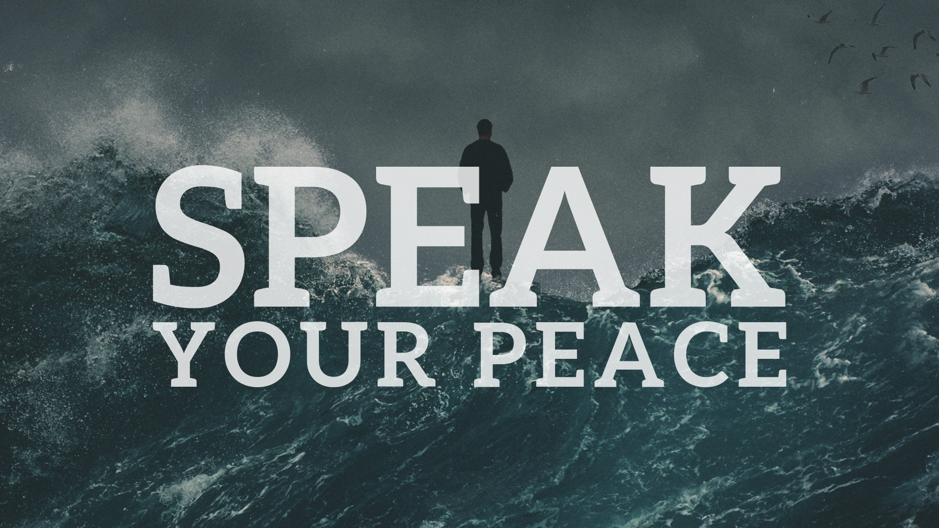 Speak Your Peace 2-2.png