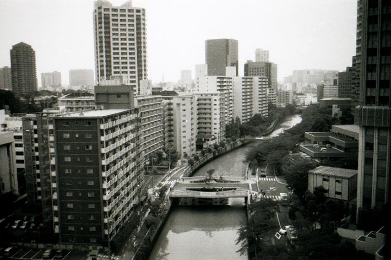 AWolf_Japan02.jpg