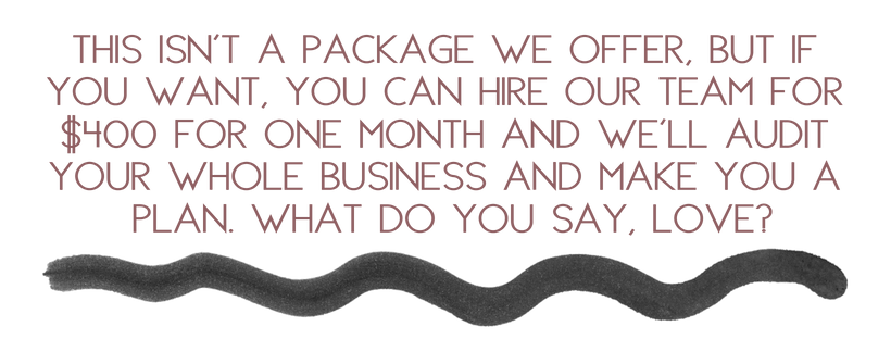 this isn't a package we offer, but if you want, you can hire our team for $400 for 1 month and we'll audit your whole business and make you a plan. what do you say_.png