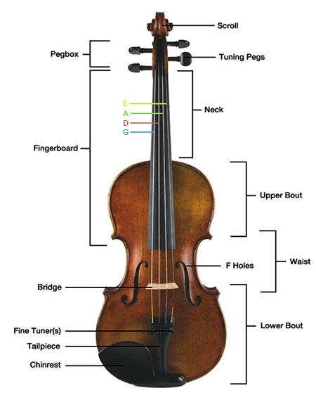 parts-of-the-violin.jpg