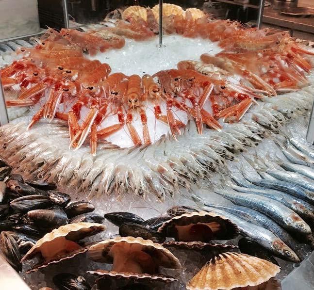 Fish-display.jpg