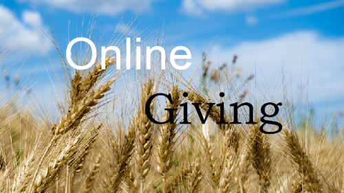 Online Giving Button.png