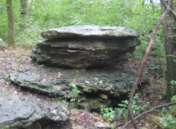 Believed to be the remains of a Nephite alter at Adam-Ondi-Ahman.jpg