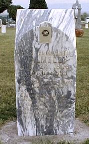 Ann Elizabeth Hodgkinson Walmsley gravestone.jpg