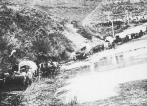 Wagon Train.jpg