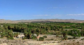 Moapa valley.jpg