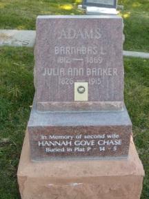 Barnabas Lathrop Adams gravestone.jpg