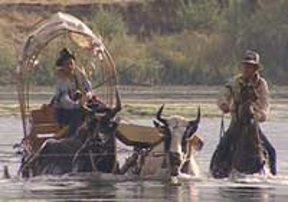 Wagon crossing river.jpg